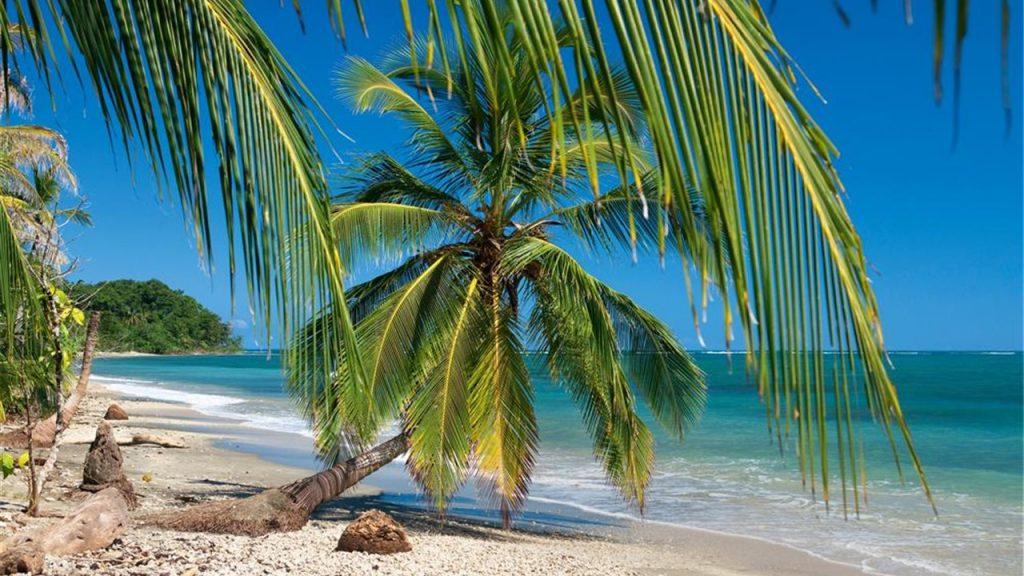 Coco Beach Vacation Rentals 1