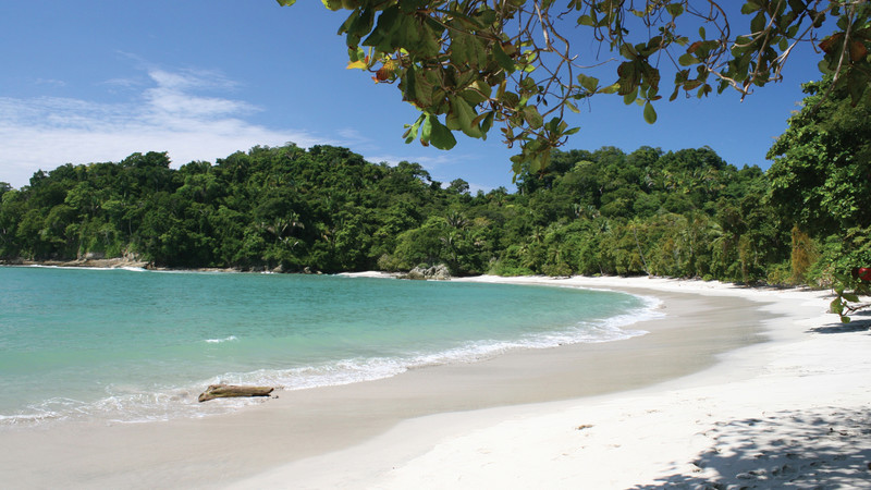 Tropical Holidays1